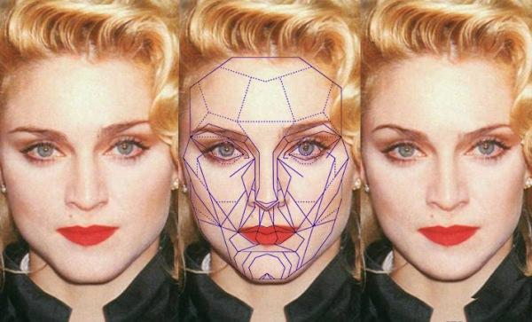 Идеальные пропорции лица женщины золотое сечение